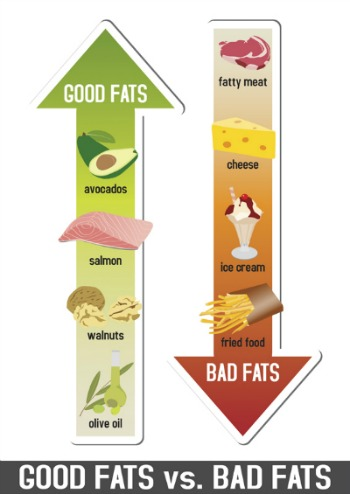 diagram of differences between good fats and bad fats